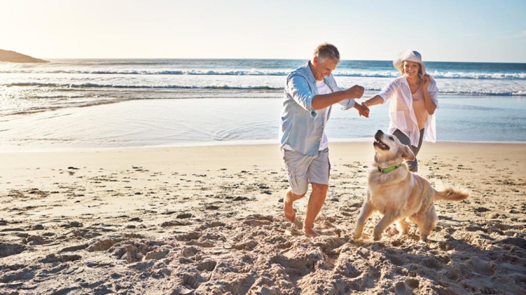 the-best-pet-friendly-destinations-on-australias-east-coast-98709-ws